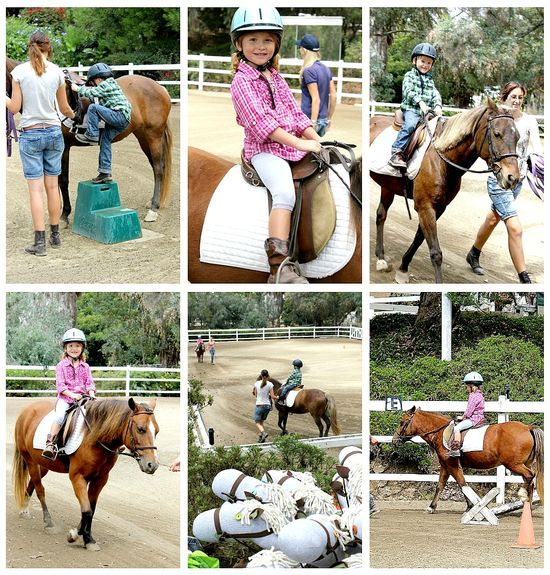 Horse riding Mega Arte Riding Academy