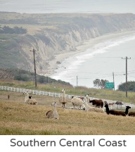 Southern central coast
